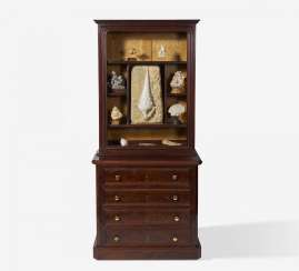 Extraordinary cabinet with a collection of gastropods and mussels