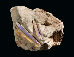 AN OPALISED BELEMNITE ROSTRUM
