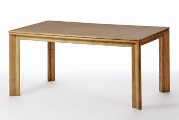 Extendable table model