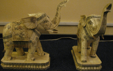 Elephants, ivory, twentieth
