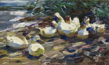 Ducks on the shore (Seven white ducks)