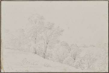 Kobell, Franz, attributed to. Tree landscape