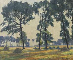 Lawn Berger, Alfred: Sunny landscape