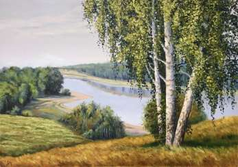 Birches on the high bank of the river