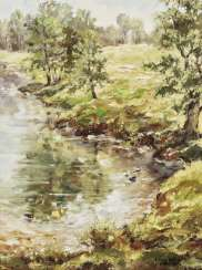 Brook landscape