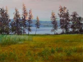 Original landscape painting oil on canvas, Silent evening near Dnepr river
