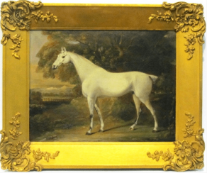 The white horse of the XVIII-th century