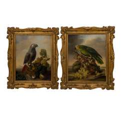 PETTER, FRANZ XAVER (Vienna 1791-1866), pair of parrot pictures as counterparts,