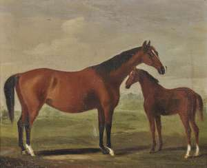 SARTORIUS, FRANCIS. Mare with foal