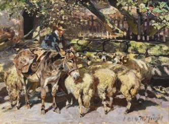 Shepherd with flock of sheep, and mule