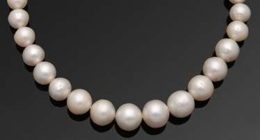 Elegant South Sea pearl necklace