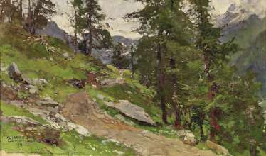 Path in mountain landscape