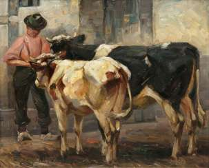 Farmer with a cow and a calf
