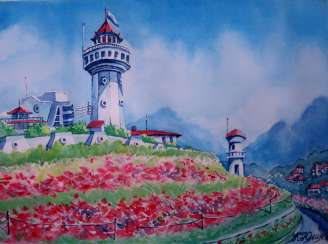 landscape with lighthouse and poppies