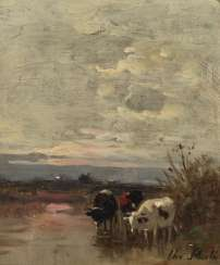 Cows in the shore water