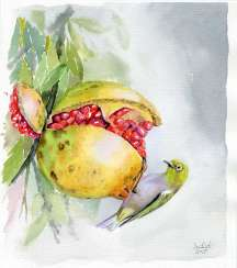 Ripe pomegranate and the bird