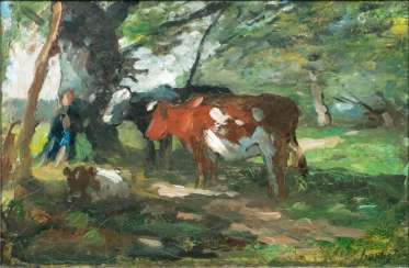 Shepherd and cows in partial shade
