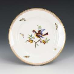 Plate with bird and insect painting