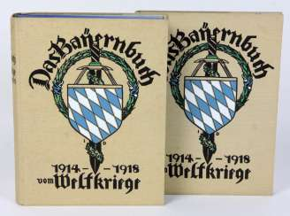 The Bayern book from the world wars