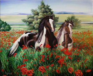 Horse on a poppy field
