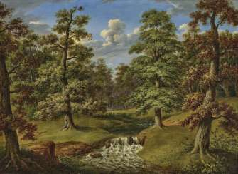 Forest landscape with stream. Weber, Therese