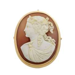 Brooch / pendant with a shell cameo,