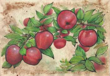 Bulk apples. 2021 Handmade. Author - Natalia Mishareva