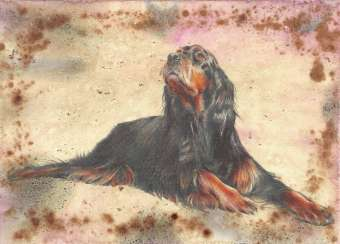 Get yourself a dog. Scottish Setter. 2021 Handmade. Author - Natalia Mishareva