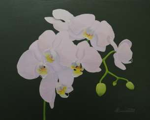 Orchid. Oil. Canvas on cardboard (40 x 50 cm)- 2020