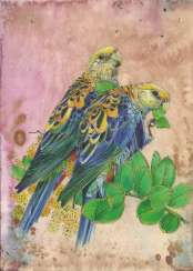 Oh, WAN, look at the parrots! Drawing, handwork, 2020 the Author - Natalia Pisareva