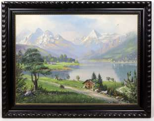 Alpine view of the lake Hassel book