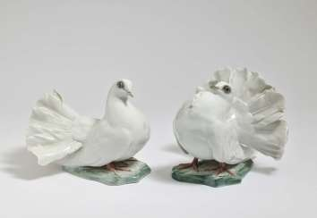 'Couple of doves