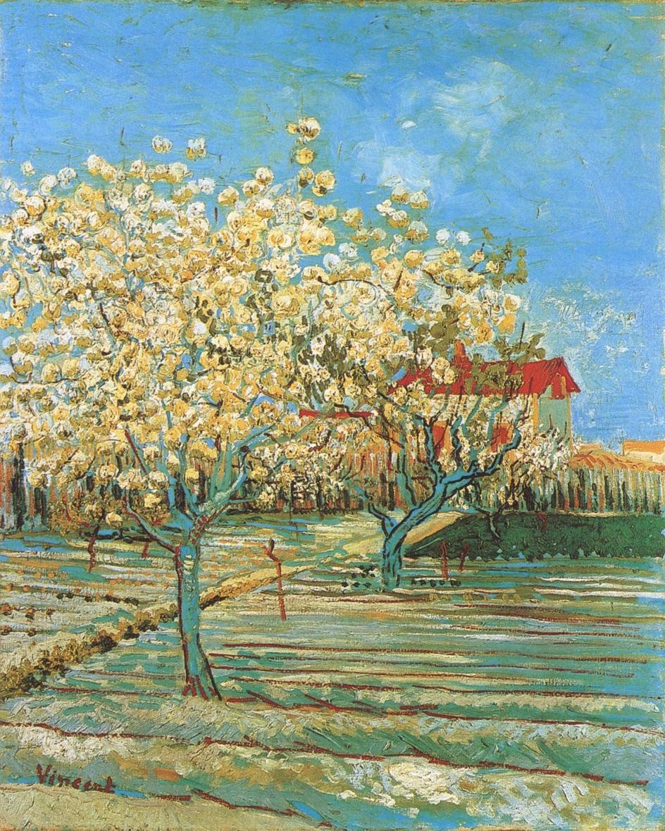 Весна на картинах. Винсент Ван Гог. «Фруктовый сад в цвету», 1888